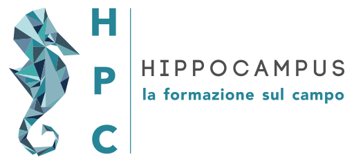 hippocampus - on-the-job training and sales